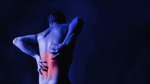 Lebensberichte in Kategorie Spina Bifida