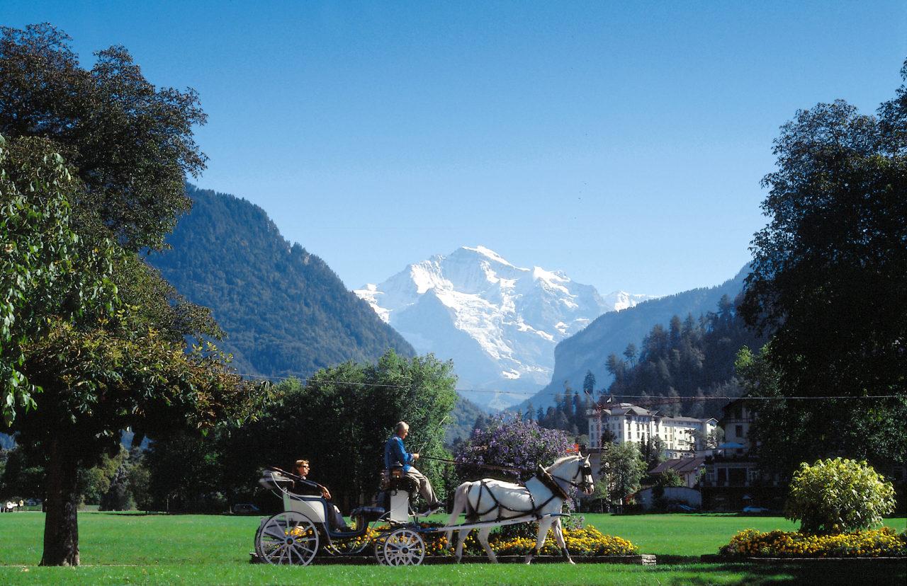 Geniessen Sie eine romantische Kutschenfahrt und entdecken Sie Interlaken und seine Umgebung.
